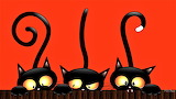 Halloween Cats by Ma Donna