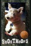Doggie Basketball
