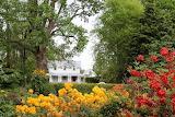 1-IMG 6316Woodlands Historic Homestead Gordonton NZ