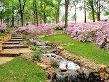#Spring Garden Water Feature