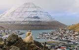 Sheep on the Peak