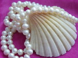 Shell-and-pearls-