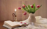 Candle, bouquet, tulips, book, petals, flowers, door, curtains