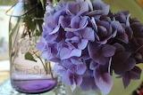 Canning jar hydrangea flower