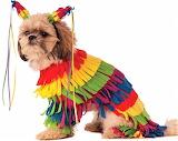 Piñata Pup