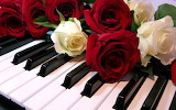Roses n Music