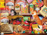 Steve Read 'Sweet Shop Kittens'