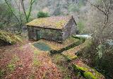 Fontao-Galicia-Spain