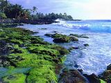 Okeani i mora (1)