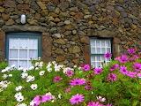 House in Santa Cruz das Flores. Flores Island. Azores