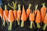 Baby-carote-verdure