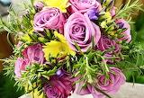 Best flowers###762 7