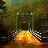 Bridge over Selway River Idaho