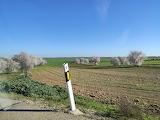 Campo Real-Velilla