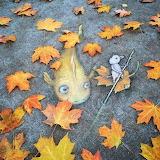 Chalk-Art-By-David-Zinn-25