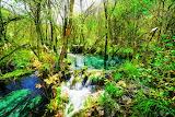 60364277-azure-río-increíble-con-agua-cristalina-entre-verdes-bo