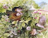 Spring ~ Marjolein Bastin