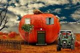 Pumkin-house