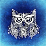 Owl abstract