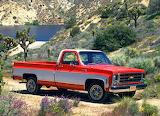 1979 Chevrolet S20 Silverado Fleetside