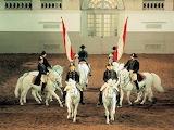 Spanish Riding School of Vienna performing the Quadrille