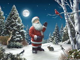Santa Clause with animals