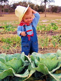 Farmer Boy in the Cabbage Patch