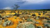 Bool Coomatta Plains Australia 2448715-1366x768-[DesktopNexus.co