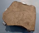 Elgin Museum: Burghead Bull