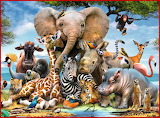 African Animals - D