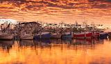 Shrimp Boil Sunrise
