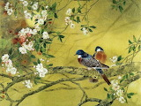 Birds and Chinese plum