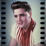 Elvis Portrait