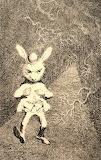 "Alice tumblr enchantedbook ""The White Rabbit"""