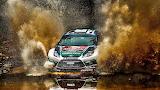 Ford Fiesta Rally