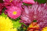 ^ Fall bouquet