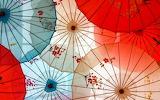 umbrellas###37