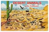 "Science scientificillustration ""Desert Animals of the Southwest,"