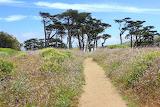 Point Reyes National Seashore~Marin County