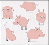 Pigs-wp copy