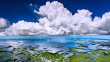 Rainclouds over the Everglades