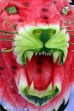 Melon lion
