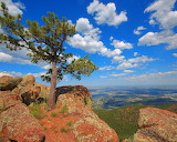 Lone_Pine_Mountaintop_by_greenunderground
