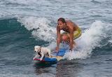 girl & dog surfers