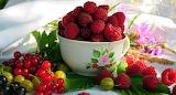Zzx tenebra.fruits (9)