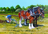 The Plowing Match~ POakley