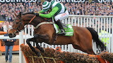 Rock On Ruby and Noel Fehily 2012 Champion Hurdle