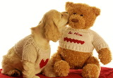 #Teddy Bear Love
