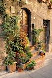 Stairway full of plants, beautiful door