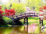 Early Japanese Garden